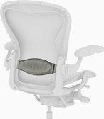 Aeron Lumbar Support