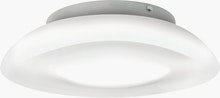 Lunex Ceiling/Wall Light,  15in,  LED Dimmable