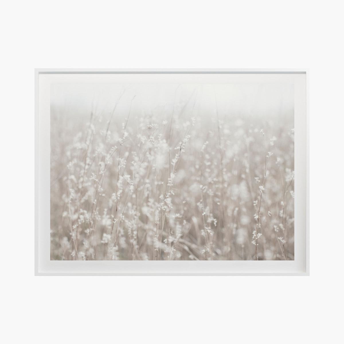 """Fields + Flora no.5669"" by Cas Friese"