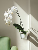 Story Planter with Wall Mount