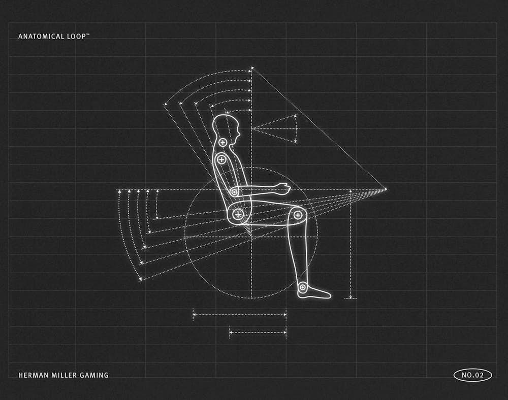Anatomical Loop Illustration