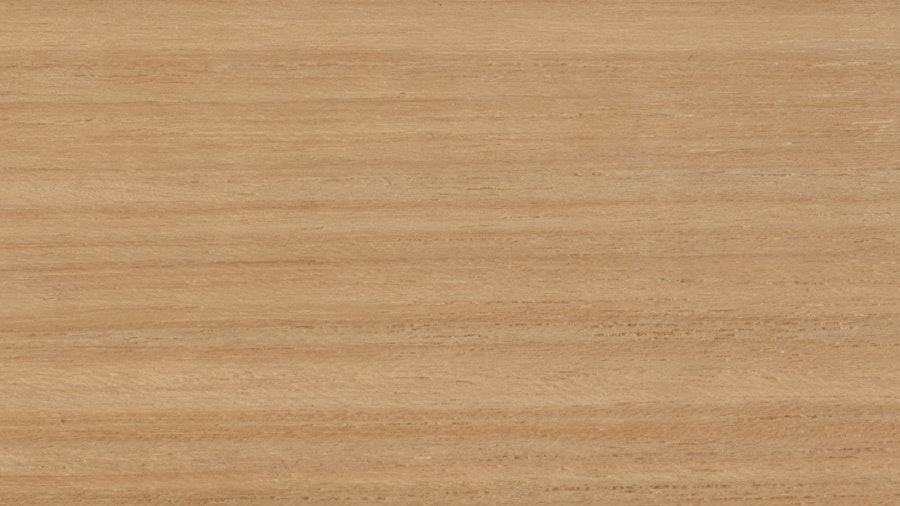 Teak Wood Swatch (DWR/Finn)