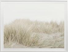Cas Friese Dunes no.7100
