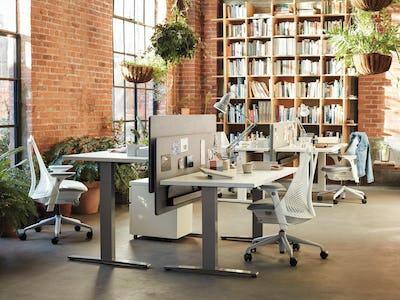 Motia Sit-To-Stand Desk Bushwick Image