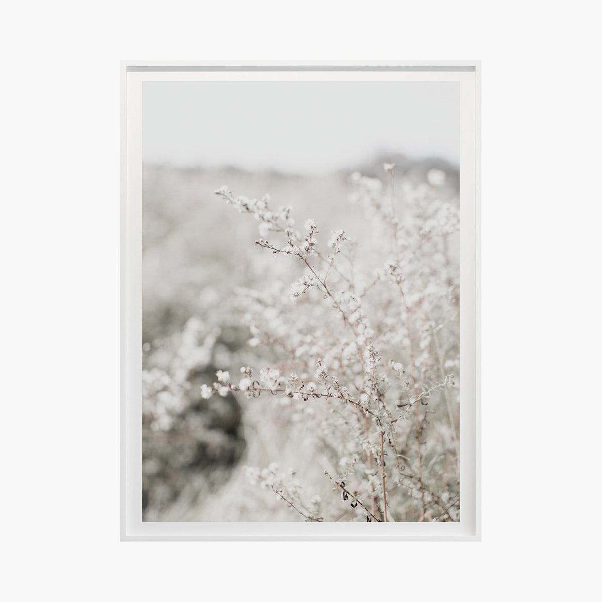 """Fields + Flora No. 5664"" by Cas Friese"