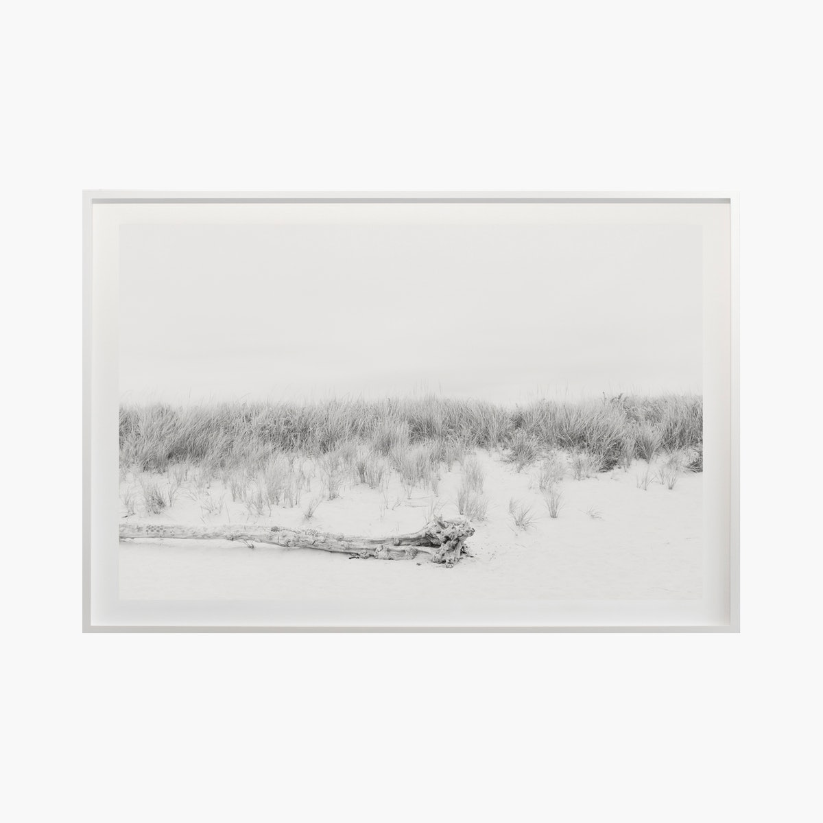 """Dunes No. 1420"" by Cas Friese"