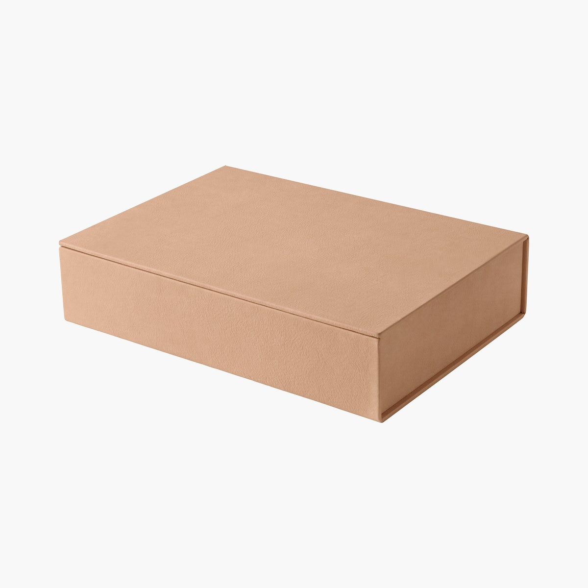 Fritz Hansen Leather Box