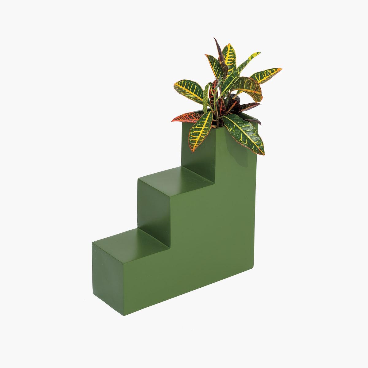 Steps Planter