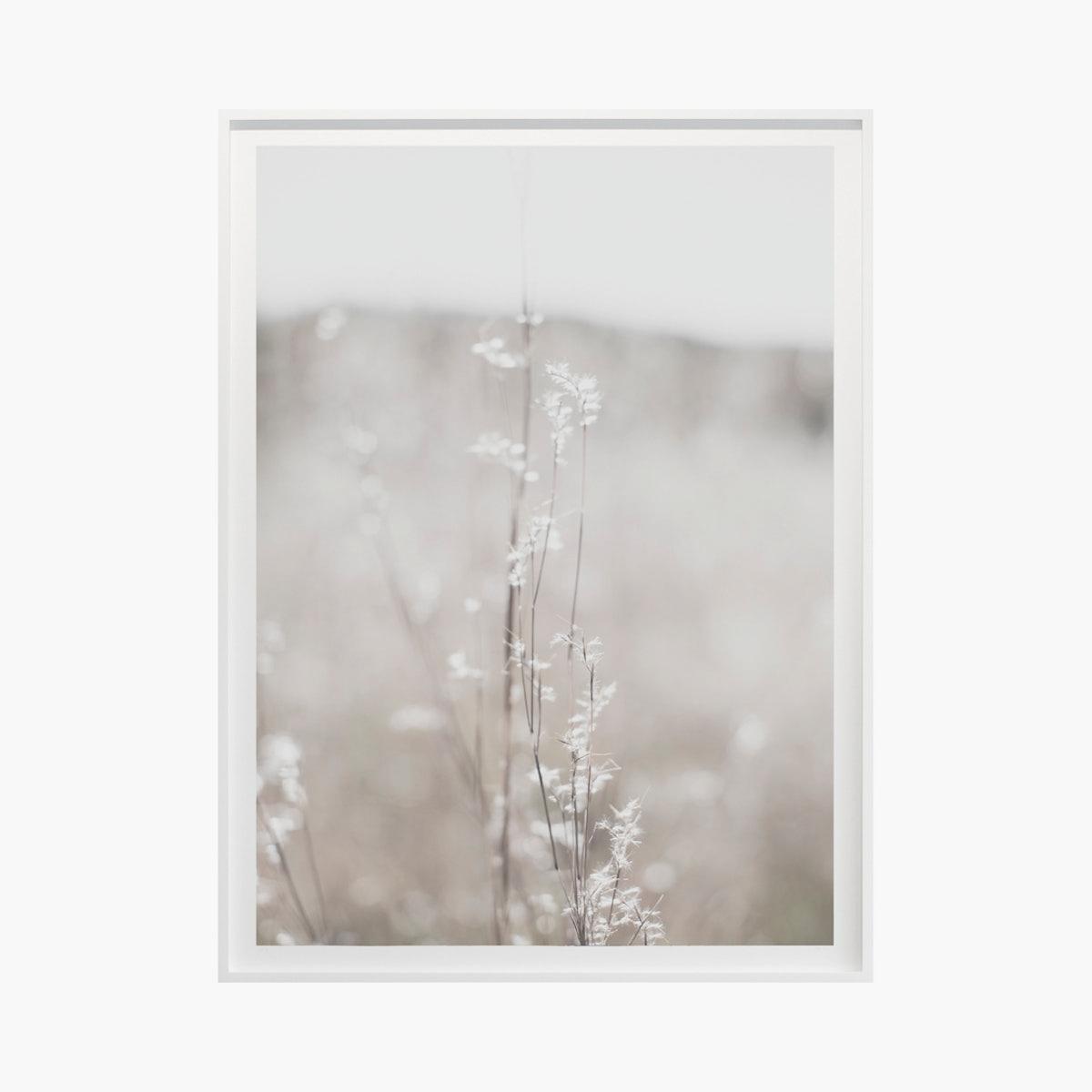 """Fields + Flora No. 5450"" by Cas Friese"
