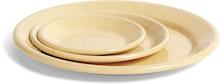 Enamel Dish