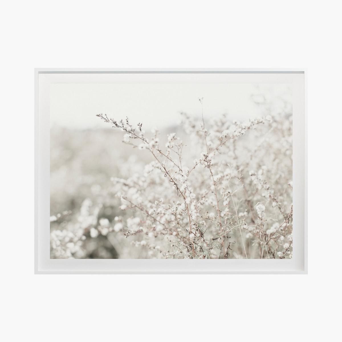"""Fields + Flora No. 5662"" by Cas Friese"